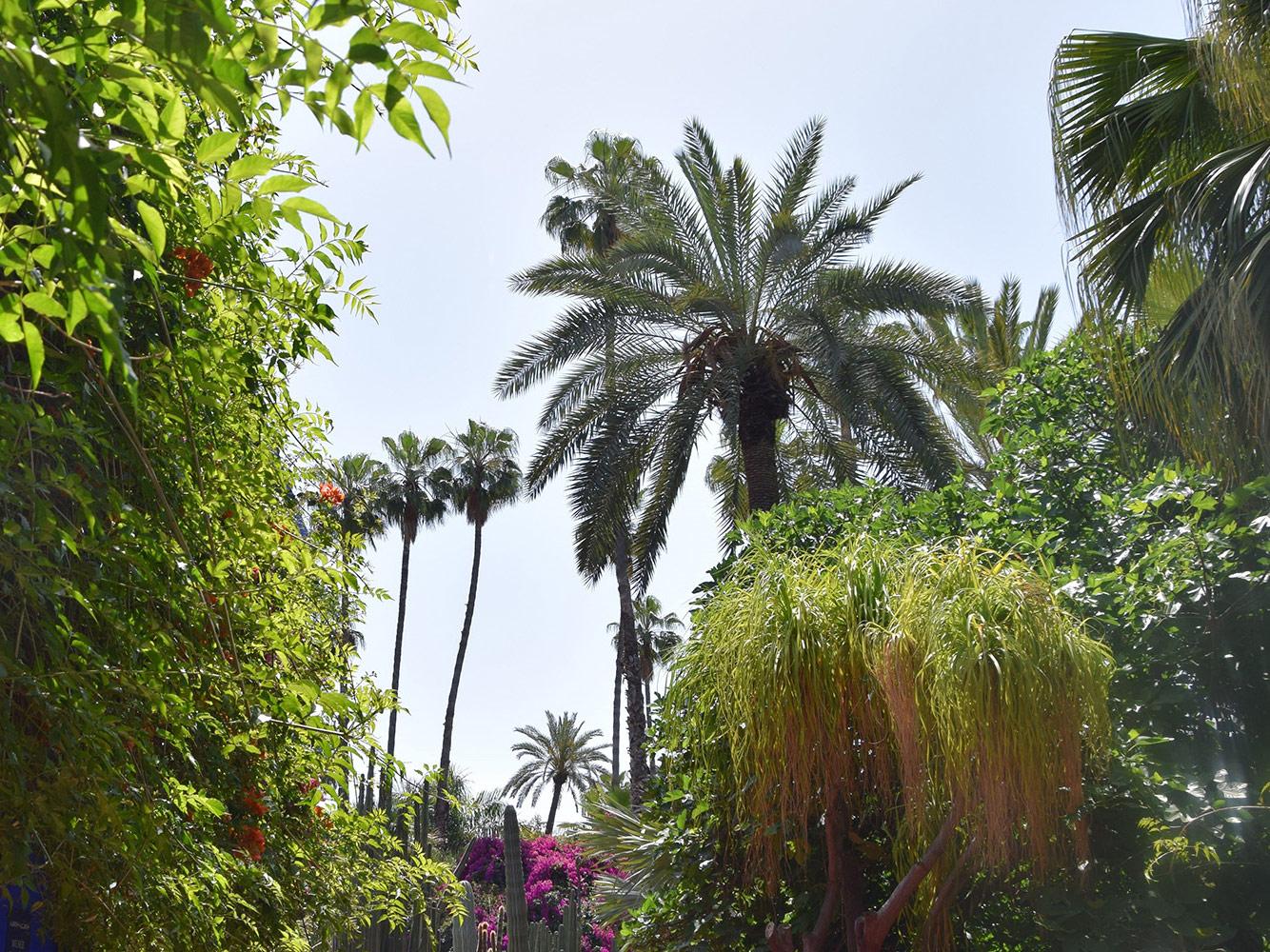 Marokko_Vivace-Travel_Garten